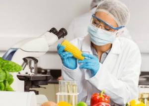 ملتقى الإبداع في الصناعات الغذائية إبريل المقبل